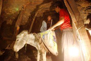 Shan und sein Freund beladen die Säcke des Esels im Stollen. (Quelle: Christian Herrmanny)