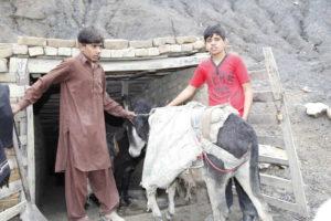 Shan und sein Freund mit einem Esel vor dem Eingang zum Stollen. (Quelle: Christian Herrmanny)