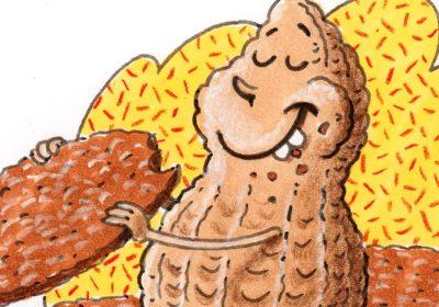Illustration einer Erdnuss, die ein Plätzchen isst. (Quelle: Peter Laux)