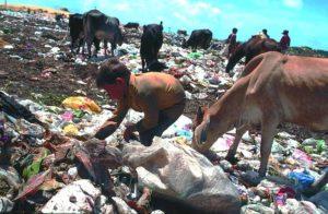 Ein Kind und mehrere Kühe wühlen auf einer Müllhalde nach Abfällen. (Quelle: Christoph Engel)