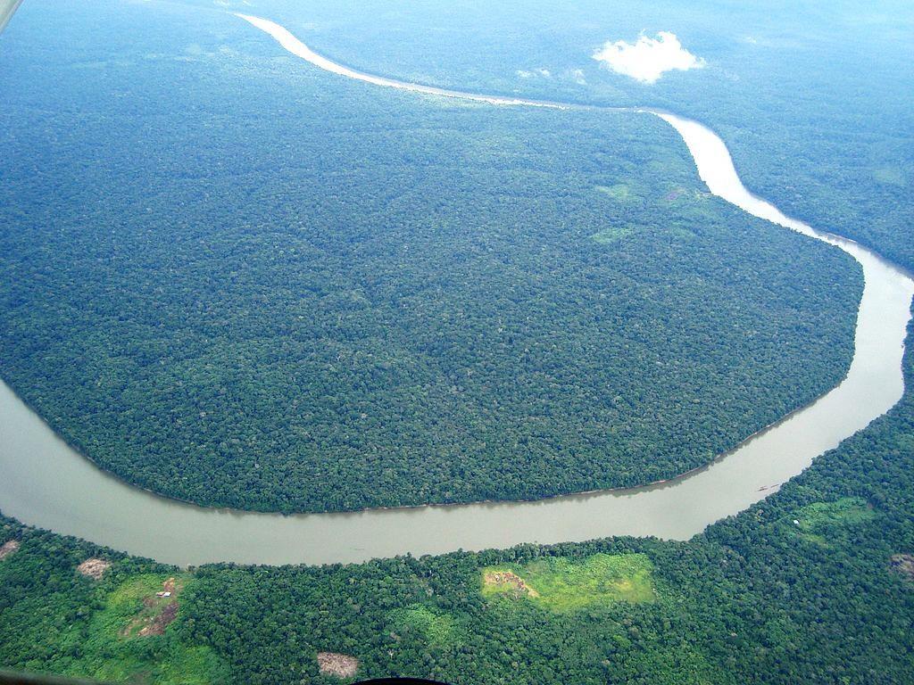 Der Amazons-Fluss im Bundesstaat Amazonas. (Quelle: Jorge.kike-wikimedia commons)