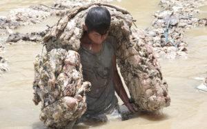 Ein Junge schleppt einen riesigen Sack Kautschuk aus dem Fluss an Land. (Quelle: Christian Herrmanny)