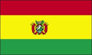 Die bolivianische Flagge