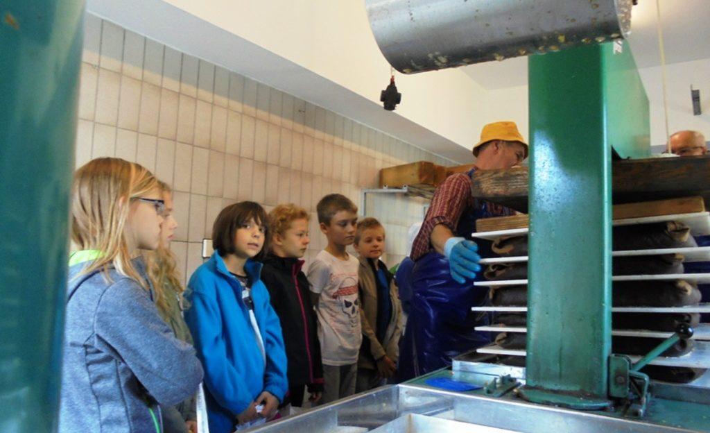 Die Klasse 4b der Grundschule der Mosterei des Obst- und Gartenbauvereins Offenhausen. (Quelle: privat)