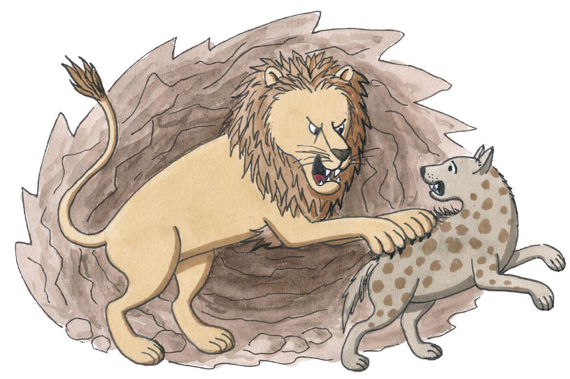 Ein Löwe in einer Höhle greift eine Hyäne an und kratzt sie auf dem Rücken  (Quelle: Peter Laux)
